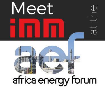 IMM participates at the Africa Energy Forum 2019.